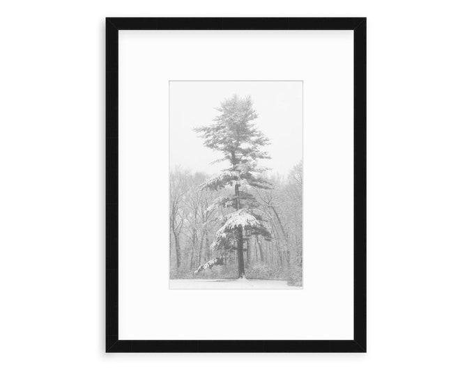 Tree Art Print, Tree Artwork, Tree Art, Tree Art Canvas, Nature Prints, Nature Wall Art, Nature Landscape, Landscape Canvas Art,Winter Scene