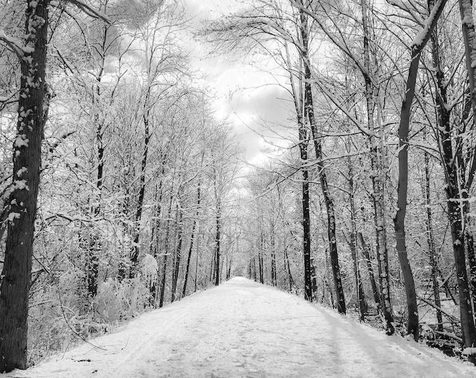 Winter Landscape, Winter Scene Art, Winter Landscape Print, Landscape Print, Forest Print, Winter Scene Wall Art, Wall Art Print, Winter