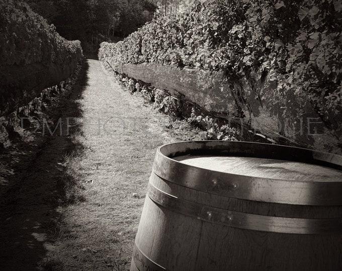 Winery Print, Winery Art, Winery Sign, Winery Decor, Winery Wall Art, Winery Photography, Bar Sign, Wine Decor,Wine Decor For Wall,Bar Decor