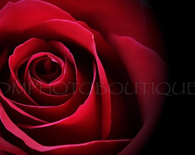 Red Rose Print, Red Rose Canvas, Rose, Rose Art, Rose Print, Rose Photo, Rose Wall Art Print, Rose Art Print, Flower Print, Flower Wall Art