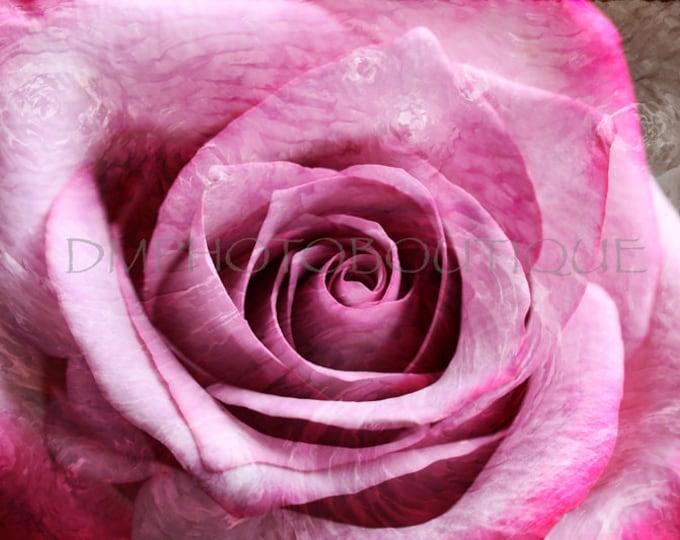 Rose Art Print, Rose Artwork, Rose Art Work, Rose Wall Art, Rose Decor, Flower Art, Rose Photo, Rose Print, Flower Print, Flower Art Print