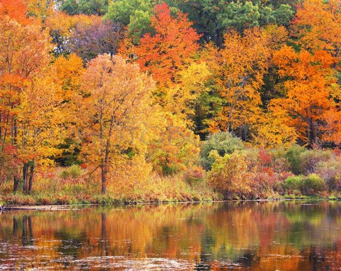 Fall Canvas, Fall Print, Fall Art Print, Fall Photography, Fall Decor, Fall Landscape Art, Fall Landscape Print, Fall Landscape Canvas, Fall