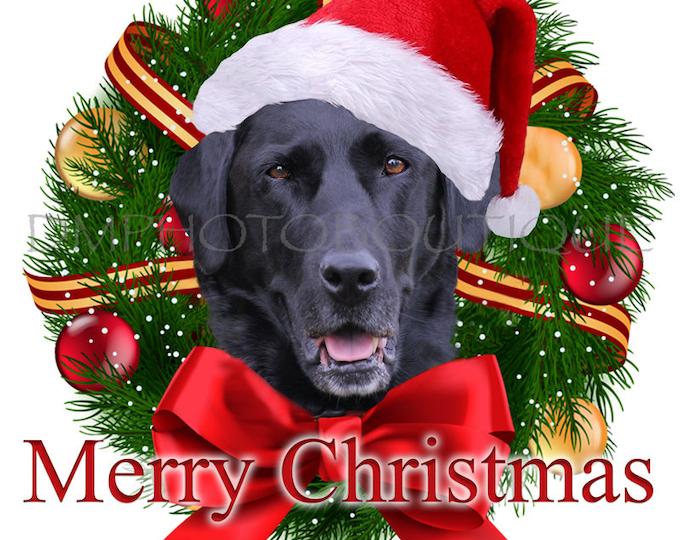 Black Lab Christmas Cards, Labrador Retriever Christmas Cards, Labrador Retriever, Lab Christmas Cards, Labrador Retriever Holiday Cards