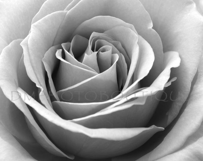 Black and White Rose Print, Black and White Rose Canvas, Rose Print, Rose Canvas, Rose, Rose Artwork, Rose Art Print, Rose Art,Rose Wall Art