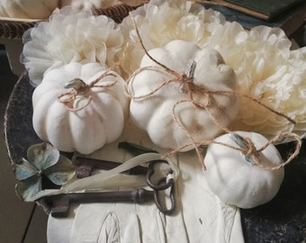 ShabbyChic 3 hübsche kleine weiße Kürbisse 2 Größen Kunststoff Herbst Dekoration in Haus und Veranda  Halloween Landhaus Cottage Farmhouse