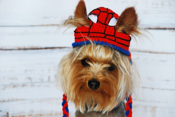 Spider-Man Inspired Hat