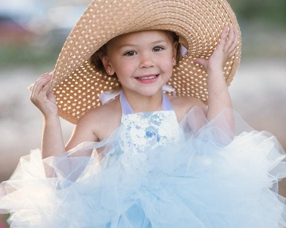 Blue and White Victorian Rose & Lace Tutu Dress
