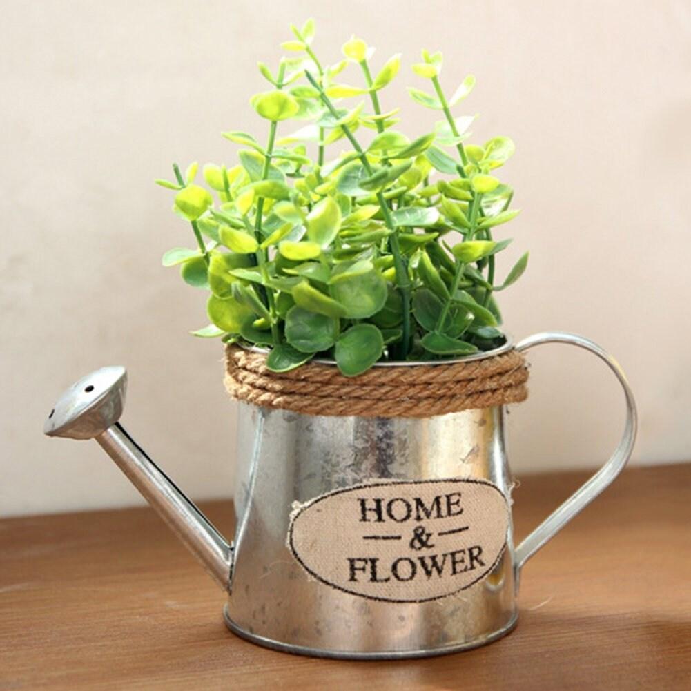 Seau Unique Succulent Metal Vintage Plantation Pots Fleur