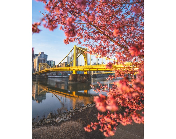 Photo of Pittsburgh and the Warhol Bridge with Spring Blossoms