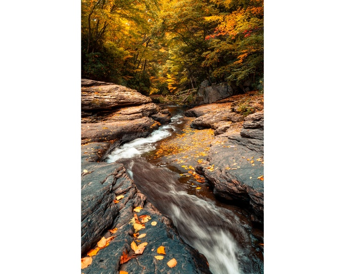 Ohiopyle Natural Waterslides Photo Print - Fall Photo Print - Autumn Photography - Fall Photography - Fall Artwork - Fall Artwork