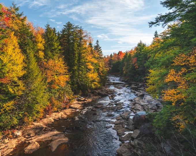 River with Fall Foliage Photo Print