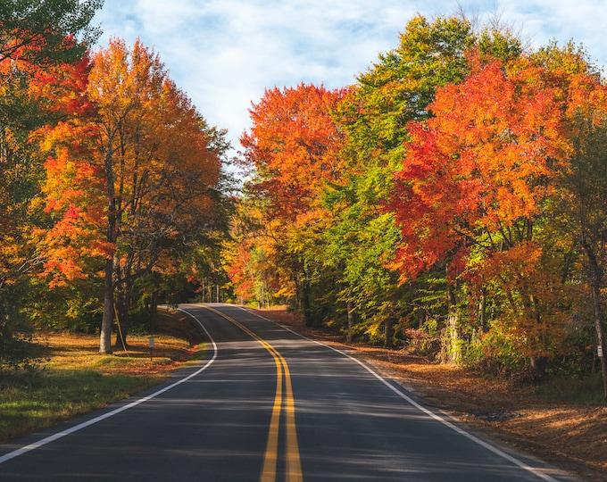 Autumn Roads Photo Print - Fall Foliage Photo - Fall Foliage Art