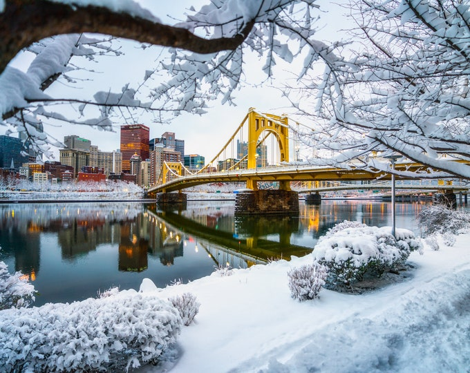 Pittsburgh Photo - Snow-covered Trees and the Andy Warhol Bridge - Pittsburgh Art - Pittsburgh Photography