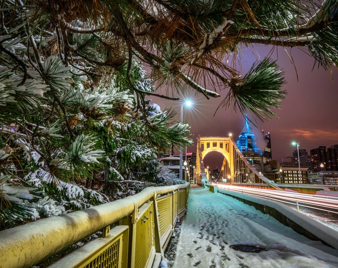 Pittsburgh Photo Print - A Snow Covered Pine Tree Frames the Clemente Bridge - Pittsburgh Art