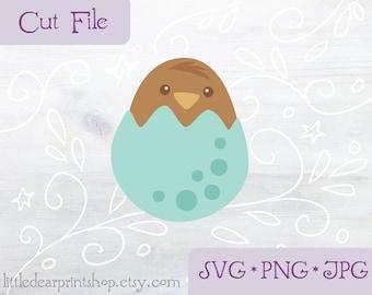 SVG Baby Bird in Egg cut file for Cricut, Silhouette, PNG, JPG spring nest animal clip art