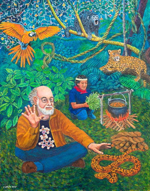 Terence Mckenna Art >> Dennis Mckenna Art Print Of Original Painting By Timothy White Shamanic Art Psychedelic Art Ayahuasca