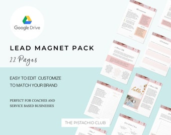 Google Slides EDITABLE Lead Magnet Pack For Coaches, Opt in packet, editable printable,business template form, Workflow templates