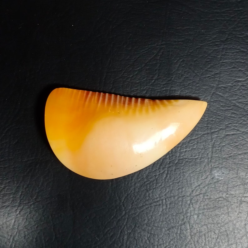 AAA Grade Quality Orange Kemoshele Cabochon Loose Gemstone Cabochon Gemstone  93.50 Carat 54x29x10mm
