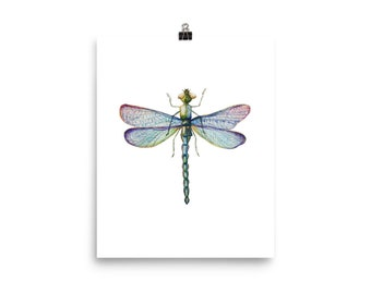 Dragonfly Art Wall Dorm Hanging PrintDragonfly Print Insect Poster Decor
