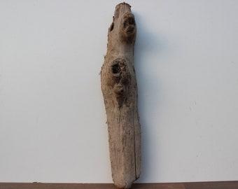 Treibholz ,Schwemmholz, 1 XL Skulptur