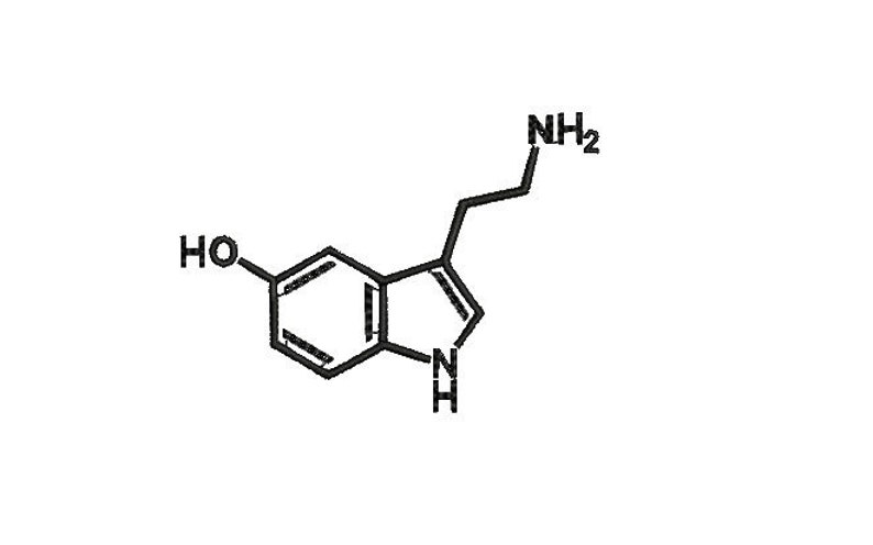 hormone of joy endorphin machine embroidery design  formula design  endorphin design Serotonin chemical Happiness  St  Patrick's day present