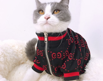 3144624c7f4fc Designer Pet Fashion Bomber Jacket Sweater for Dog or Cat