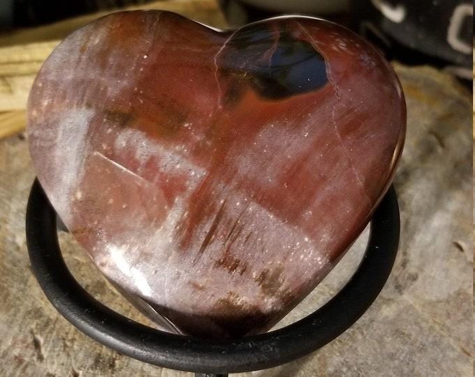 Petrified Wood Fossil Heart (p26)