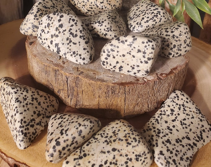 Dalmatian Stone Palmstone