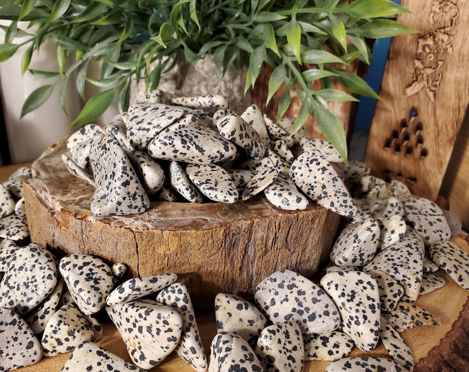 Tumbled Dalmatian Stone   On Sale Now!
