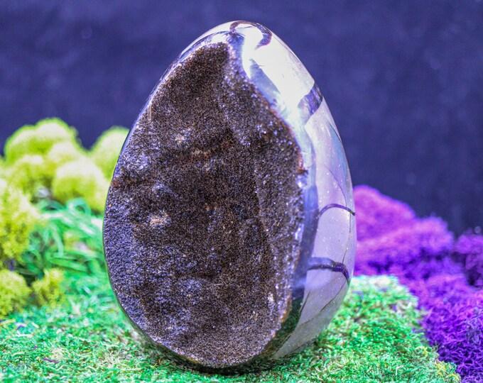Extra Large Septarian Dragon Egg