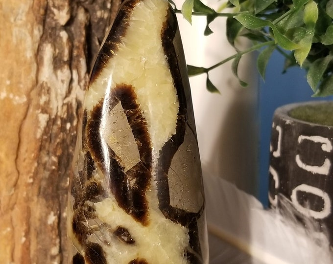 Septarian Freeform (dragonstone)