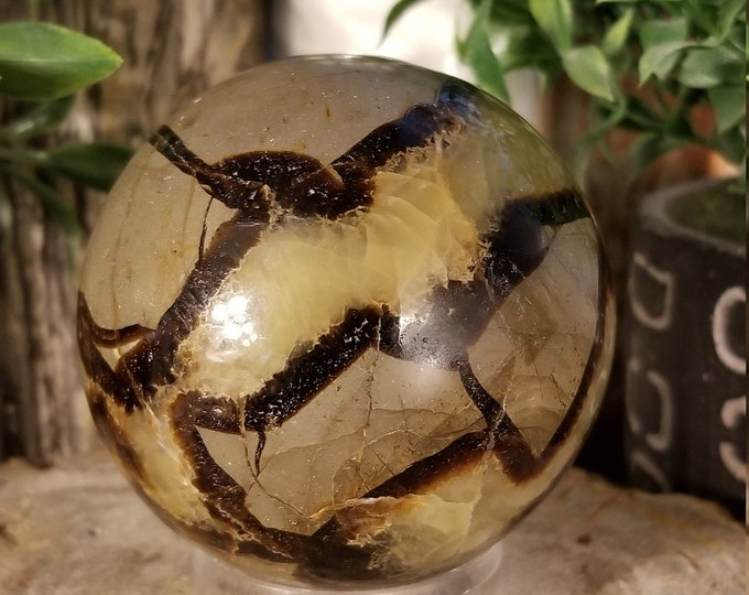2 3/4 Inch Septarian Dragon Sphere (S112)
