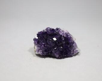 Amethyst Geode Cluster A217