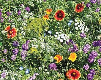 Bulk Mountain Wildflower Seed Mix | 1LB Sacred Plant Co Bulk Mountain Wildflower Mix | High Elevation Bulk Flower Seeds