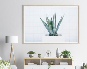 Agave Fine Art Photography, Succulent Large Wall Art, Desert Botanical Photograph, Southwestern Home Decor
