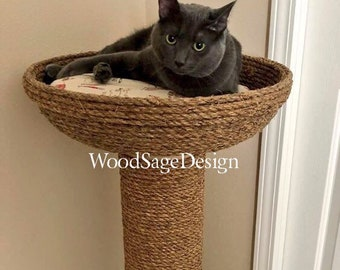 Cat Beds & Cat Trees