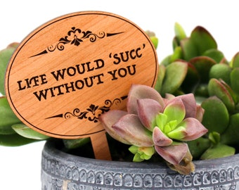 Plant Markers, Plant Labels, Succulent Gifts, Plant Lovers Gift,