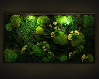Beautiful Preserved Moss Artwork with LED Lights Live Moss LED Wall Art Preserved Moss Lighted Framed Moss Wall Art Eco-Friendly Home Decor