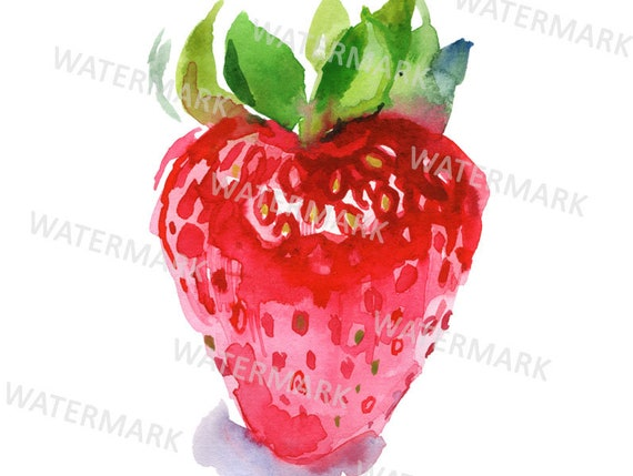 strawberry clipart watercolor strawberry illustration etsy etsy