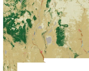 New Mexico Landscape wall map