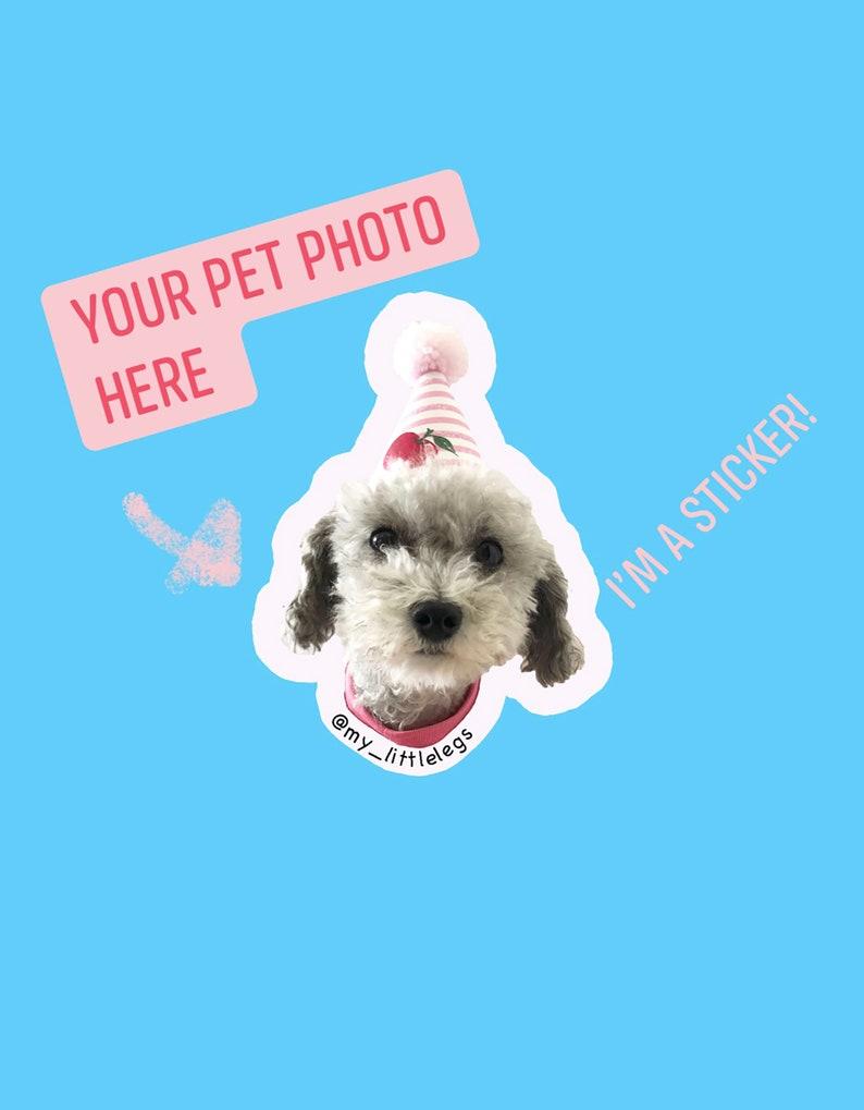 24 Pack Pet Face Sticker Pet Photo Sticker Dog Lover Gift Laptop Removable Vinyl Sticker Custom Dog Stickers My Dog Face Sticker