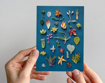 Succulents greeting card,  succulents collection, succulent print, dark background, succulents card, cactus card, cactus art