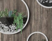 Pack of 3 White Round Hanging Planters, Wall Planter, Hanging Terrariums, Round Terrarium, Wall Vase, Round Fairy Garden, Round Iron Planter