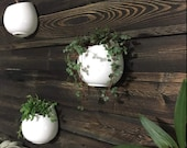SET OF 3 White Ceramic Planters, Wall Mountable Vase, Hanging Succulent Pots, Decorative Ceramic Flower Planters, Wall Planters