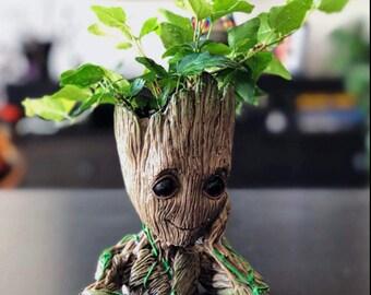 Baby Groot Etsy