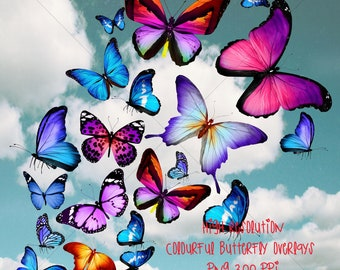 b358ccfd9a434 DIGITAL BUTTERFLY OVERLAYS coloured butterfly overlays