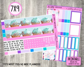 PRINTABLE Monthly Sticker Kit - Standard A5 Wide, 7x9 Planner - Happy Planner - Another Year Older - Birthday - Pink - Blue - Any Month