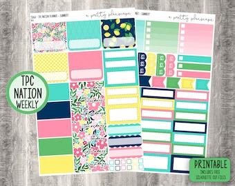 "PRINTABLE TPC Nation Planner Weekly Sticker Kit - ""Summery"" - Academic - Teacher - Cut Files"