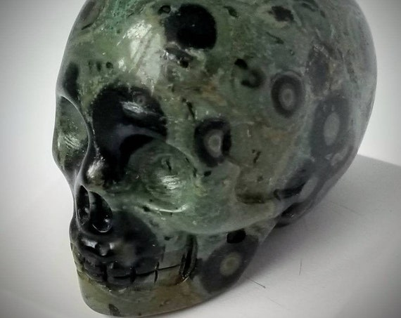 Kambaba Skull