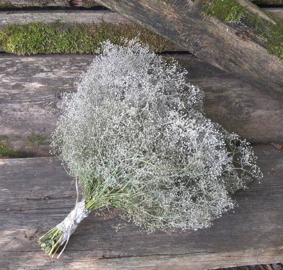 Baby/'s Breath flower bouquet dried flower dried Gypsophila bohemian wedding bouquet light painted white color bridal bouquet white gypsy